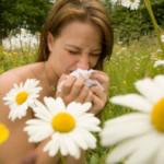 Domena o alergiach – treść dla alergików